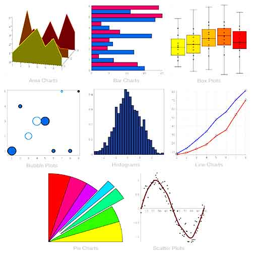 Statistics Assessment